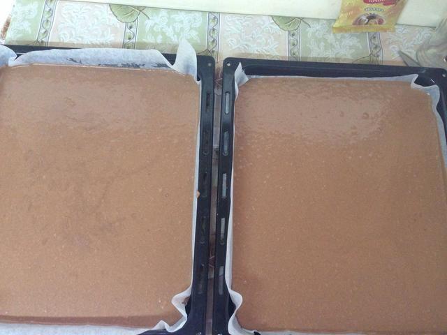 Vierta la mezcla en forma pareja en al sartenes engrasados y llevar al horno precalentado 350F durante 25-30 minutos.