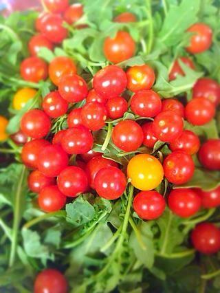 Lugar bebé rúcula con tomates en un bol (nótese que rúcula es hierba picante, por tanto, por menos de especias se puede utilizar cualquier otra mezcla de ensalada)