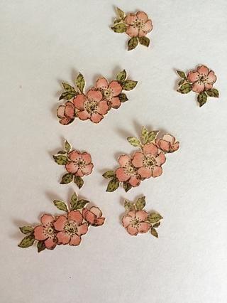 Del papel primavera, quisquilloso cortar las imágenes de flores.