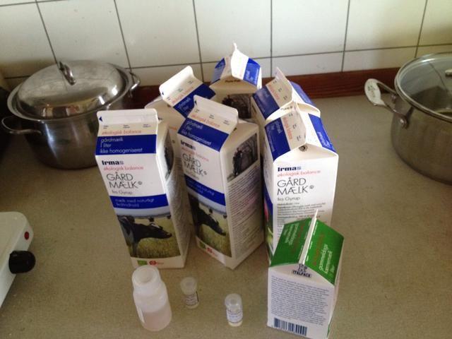 Use leche orgánica y suero de leche, ya que normalmente no se homogeneiza. No se puede utilizar la leche homogeneizada en la fabricación de queso. Deje que su leche madura sobre la mesa de la cocina durante 10 horas.
