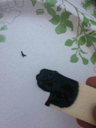 Use pintura negro y una esponja (un pincel podría funcionar mejor)