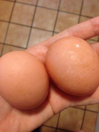 2 huevos marrones orgánicos de curso