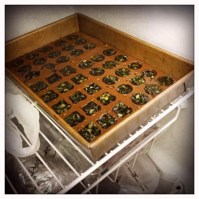 Paso Nueve: Deslice la bandeja de deliciosos bondad en el congelador y congelar distancia durante al menos 12 horas. Algunos dicen que 24, pero yo sólo lo hacen 12. A mí me funciona.