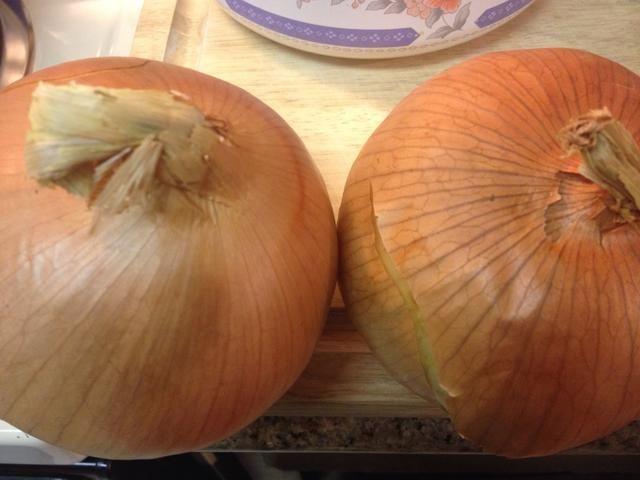Im usando aproximadamente 1 1/4 cebollas grandes a carne molida 1 1/4 libras. La cebolla ablanda, sabores, y ayuda a enlazar el kebab.