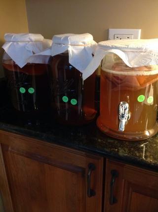 Cubra tarros con tela o toallas de papel. Se llevará a 7-10 días para esta primera fermentación. Marcos frascos con la fecha y el té con el fin de hacer un seguimiento.