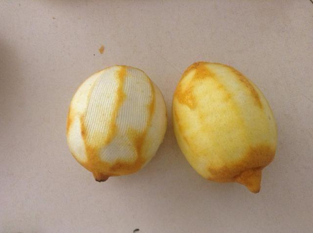 ¿Quieres sólo la capa amarilla de la piel de limón. Buen ejemplo de limón en la derecha - no ha cortado en el blanco, el mal ejemplo de la izquierda - demasiado blanco ha sido tomada.