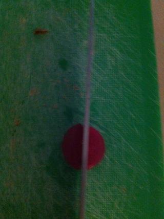 Lo siento por las malas fotos de calidad, pero cortar las jubes rasberry en quatres