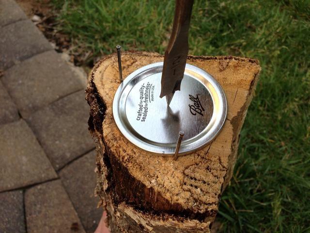 Perforar la celebración de la parte superior de la tapa. Colóquelo sobre una pieza plana de madera para evitar arrugas y taladrar a una velocidad lenta. Se utilizó una media