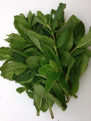 Cortar alrededor de 45 hermosas hojas de menta (8 ramas). y ponerlos inmediatamente en la cacerola. Mezcle para cubrir con aceite. De lo contrario se convierten en negro. Puede poner más Mint- comprobar el. Beneficios. Guau