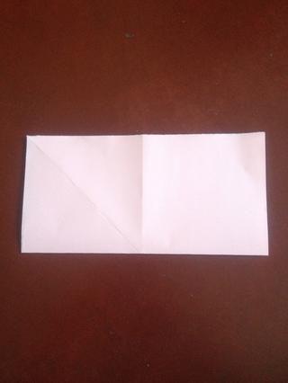 Dobla el papel por la mitad lateral y desarrollarse.