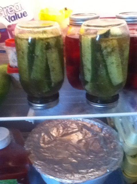 Cómo hacer Pickles De Pepinos Receta