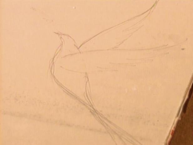 Sketch Yeso