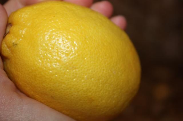 Coge un limón.