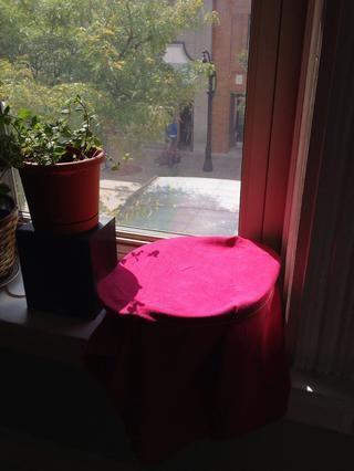 Cubra el recipiente con un paño de cocina y dejar reposar en un lugar cálido durante aproximadamente una hora.