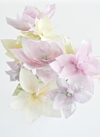Disfrute de sus creaciones. Huelen increíble. Rasguño y aspiración David's Tea flowers!