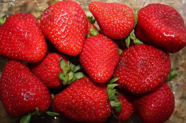 Obtener algunas fresas maduras.