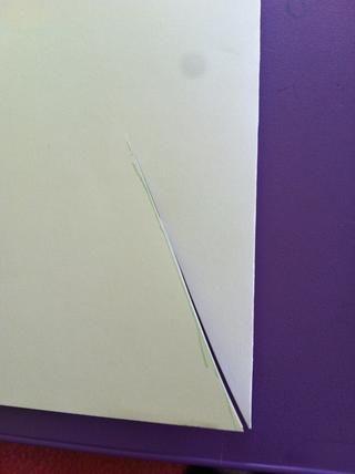 Corte a lo largo de la línea que dibujó (no la parte superior de la zanahoria, aunque-ver foto)