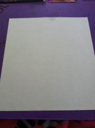 Salga de su libro blanco. (En realidad, usted puede escoger cualquier color que usted quiere que su conejo para ser, tomé un clásico blanco)