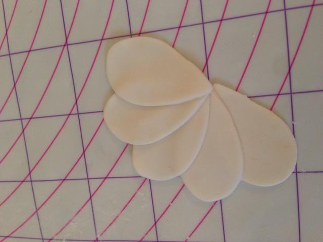 Pétalos Laicos superponen para parecerse a un medio círculo
