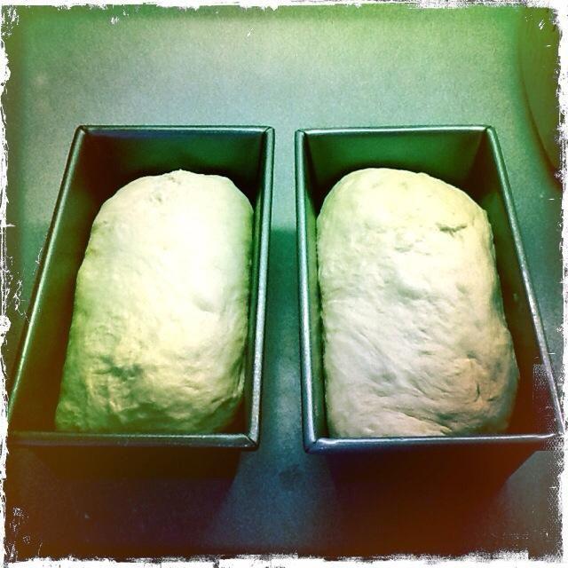 Coloque el cierre hacia abajo en sus moldes para pan y ...
