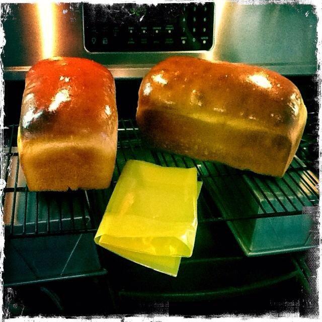 Cepille las tapas con la mantequilla y guárdelo en un