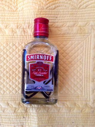 insertarlos en la botella de vodka, la cinta hasta la tapa para sellarlo. Guárdelo en un lugar fresco y oscuro.