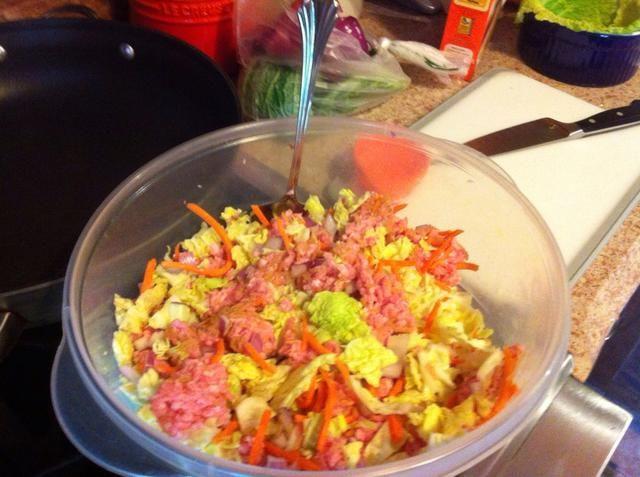 Mezclar la col picada, carne molida de cerdo, zanahoria, cebolla, arroz, sal, pimienta, ajo, pimienta y pimentón en un tazón grande.