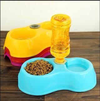 También es necesario para darle algo de comida y agua para que pueda mantenerse saludable.