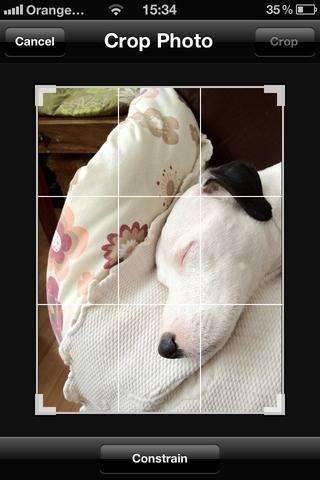 Por último, pero no menos importante la herramienta de recorte es genial para la limpieza de las fotos y de cortar el desorden no deseado de sus fotos. Lo recomiendo para todo tipo de fotografía. Haga clic en el botón de cultivos para obtener esta pantalla hacia arriba.