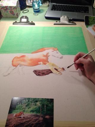 Su pintura fácil en los tintes, pero si se aplica demasiado colorante o es demasiado oscuro se puede borrar el tinte con un trozo de tela para recoger el tinte.