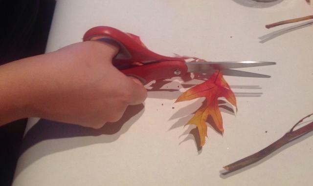 Cortar las hojas individuales del manojo y desplegar ellos para que queden planos.