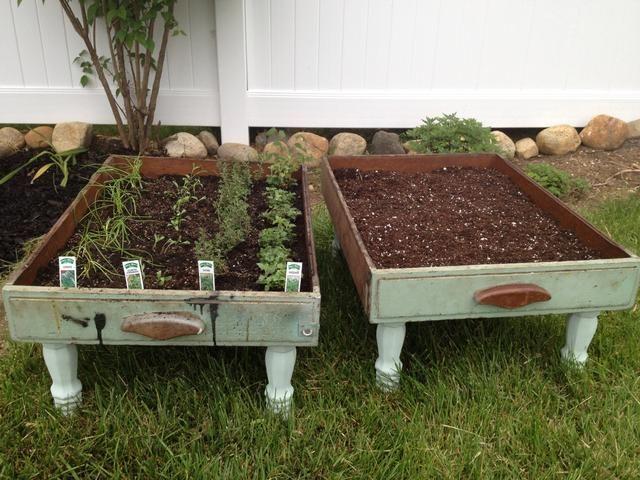 Añadir suciedad y hierbas de su elección - disfrutar!