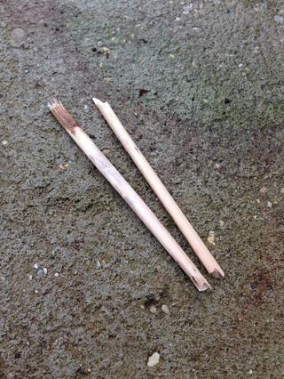 Rompa dos piezas, o más si es necesario, que son alrededor de 4 a cinco pulgadas de largo.