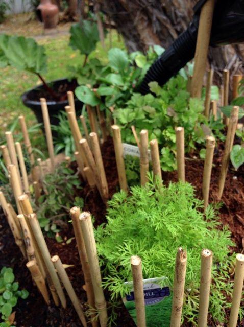 Cómo hacer tu propio Espiral Herb Garden