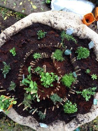 Las hierbas tales como el berro que necesitan más agua se pueden poner en la parte inferior de la espiral. Y tú're done! Take lots of pictures and watch it grow!