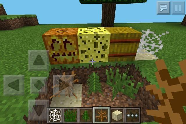 Otras cosas (las plantas en la parte inferior se pueden hacer con harina de hueso en la hierba) ...