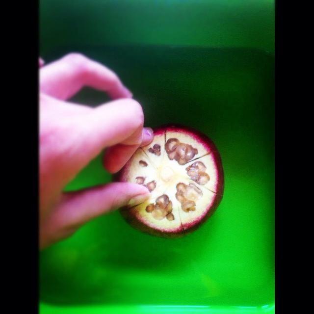 4) Cuando los 5 minutos se ha terminado, comenzará la separación de la fruta en secciones mientras está sumergido en el agua. Mientras sumergida, es menos probable que se jugo chorros por todas partes .m