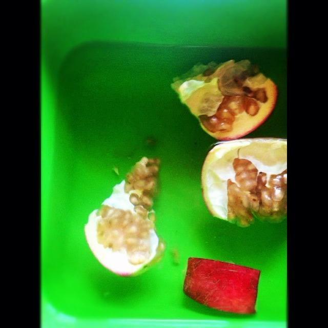 5) Las semillas se hundirán hasta el fondo y la membrana y la piel flotará en la parte superior.
