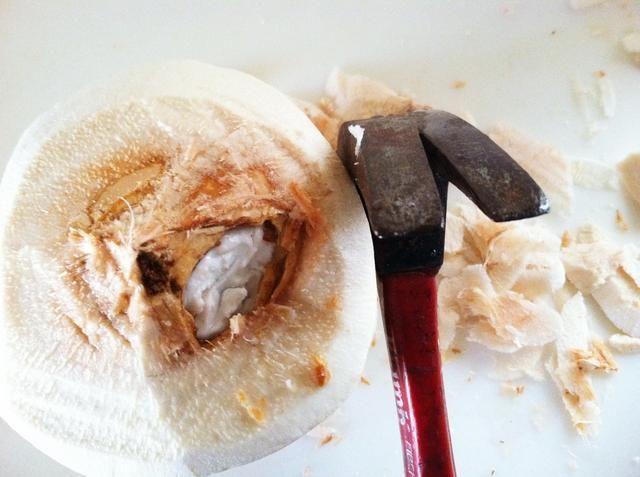 Usando el lado de la garra de un martillo, crear un agujero lo suficientemente grande como para dejar al descubierto la carne de coco / carne. Haga un agujero a través de la carne con un cuchillo.