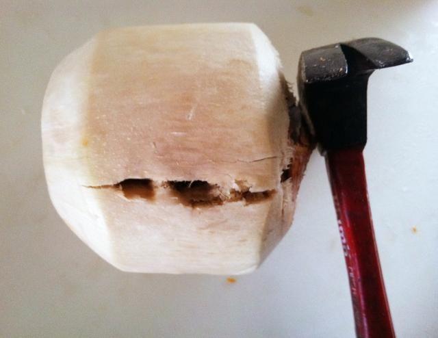 Utilizando un martillo, crack abra cuidadosamente un lado. Luego déle la vuelta y repetir en el otro lado.