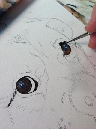 Ello's fun to paint the eyes first and have the eyes looking back at me for the rest of the painting.