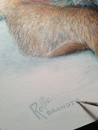 Firmo abajo a la izquierda oa la derecha y no demasiado atrevida ... trato de complementar un poco el color de pintura. A veces me inscribo antes'm finished like with this one.