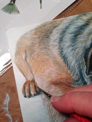 Y la pata hacia atrás ... La pintura acabada habrá pintado bordes y se le dará, junto con un caballete decorativo para sentarse en un estante en lugar de ser enmarcado.
