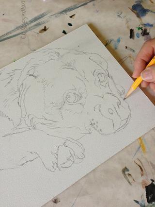 Empiezo por el dibujo a lápiz sobre masonite que ha sido cebados utilizando 2 capas de gesso, aplicados con un rodillo de pintura fina, lo que supone una superficie ligeramente punteado lo cual es bueno para pintar.