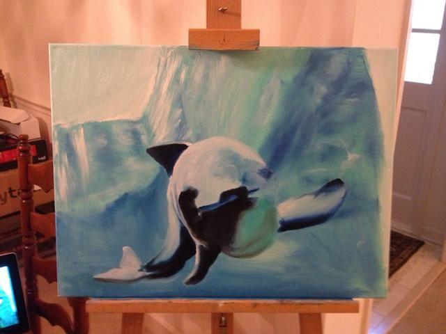 Añadir blanco y azul a la cola, a continuación, negro de la aleta y el cuerpo.