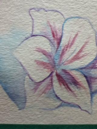 Luego agrego algunas sombras y un contorno fino alrededor de la flor con el azul y una mezcla de azul y rojo.