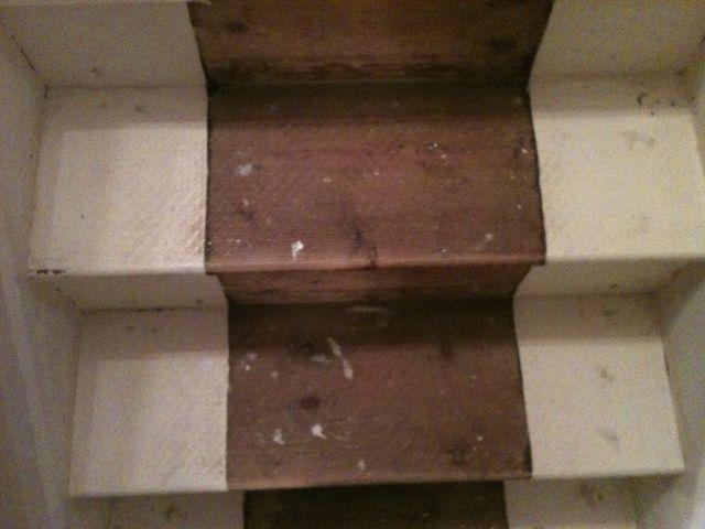 Escaleras de barrido, entonces Hoover luego limpie con agua caliente y jabón. Esto lleva mucho tiempo, pero no quiero trozos de suciedad en su pintura.