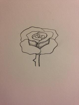 Comience con eran la rosa no consigue la mayoría de la luz