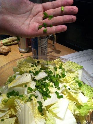 Traslado pedazos a un tazón grande y mezcle con 2 T de la sal, los chiles y la cebolla de verdeo.