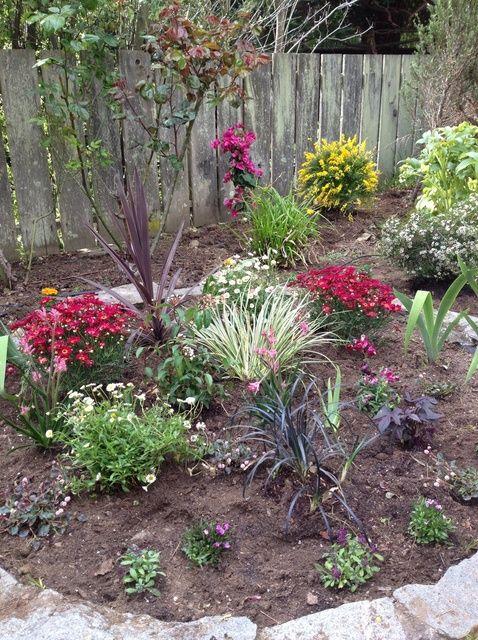 Fotografía - Cómo plantar un jardín